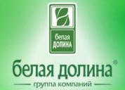 Поволжский, ООО Торговый дом