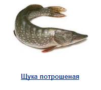 Водолей, ООО Оптовая компания в Самаре