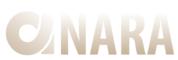 Веб-студия ANARA